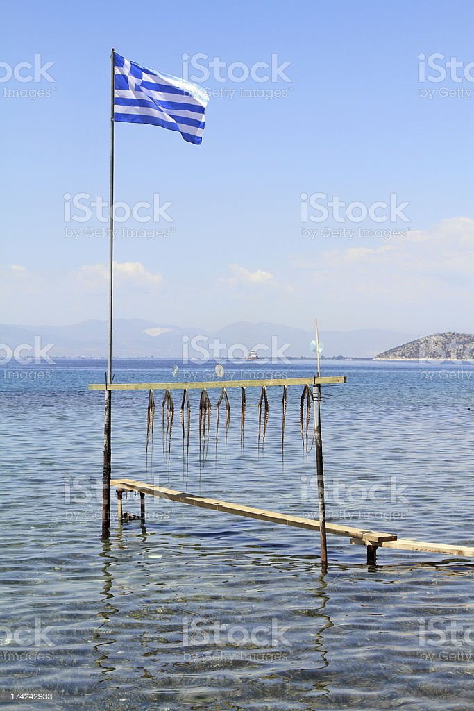 Octopus tentacle drying under the sun in Greece royalty-free stock photo