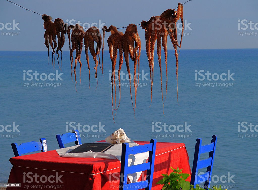 Octopuses on a string royalty-free stock photo