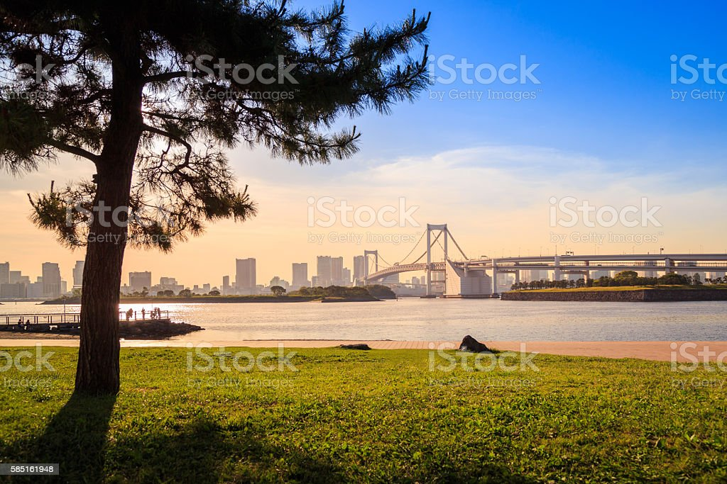 Odaiba Nature Garden stock photo