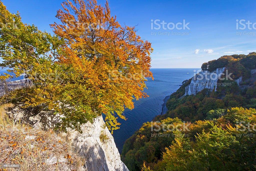 K š oenigsstuhl im Herbst – Foto