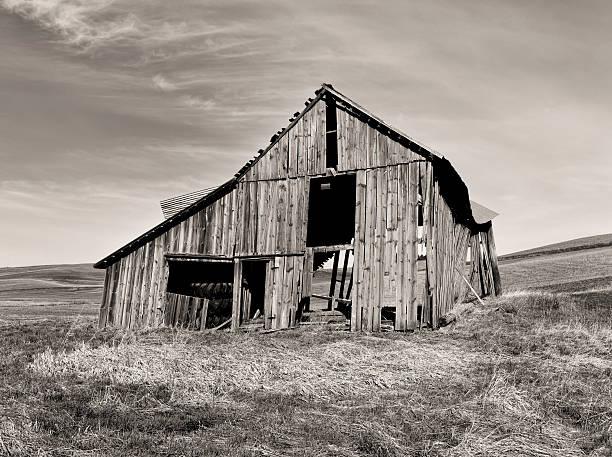 B&W of old barn. stock photo