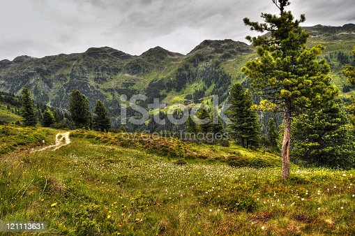 HDR of Zillertal Alps landscape (Austria). Gerlostal with view to Dark clouds and meadow of cotton grass.