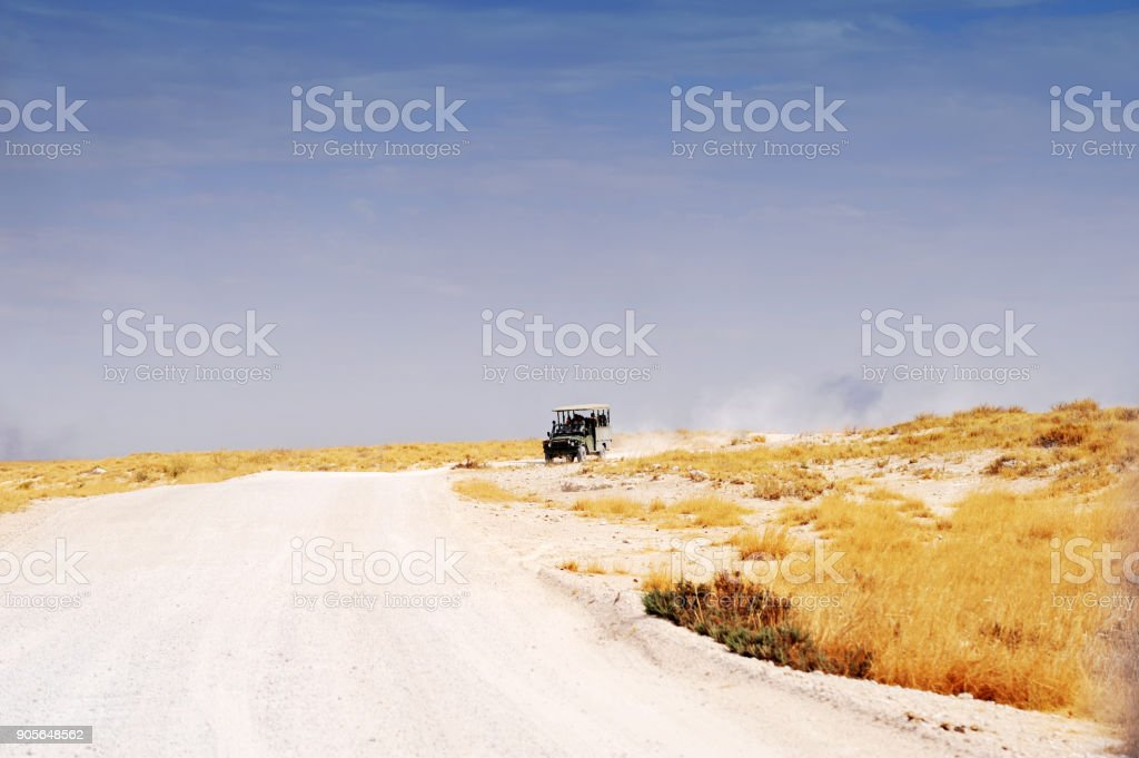 Off - road safari vehicle is driving  in Etosha National Park,Namibia stock photo