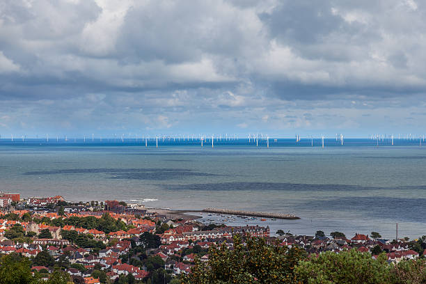 Ferme de la côte vent - Photo