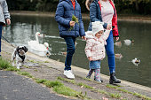 A family with their pet dog walking along a path next to a pond filled with wildlife at Jesmond Dene in Newcastle-Upon-Tyne. The main focus is the young girl holding hands with her mother and walking alongside her brother, they are unrecognizable.