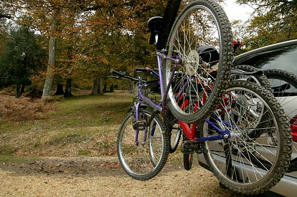 auf den wald - fahrradhalter stock-fotos und bilder