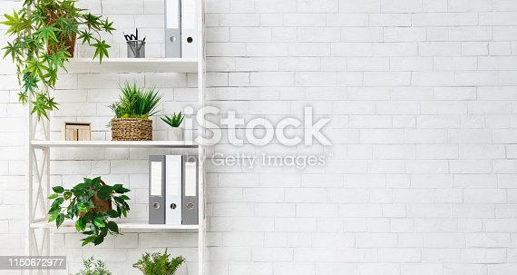 Office bookcase with plants and folders over white wall, empty space