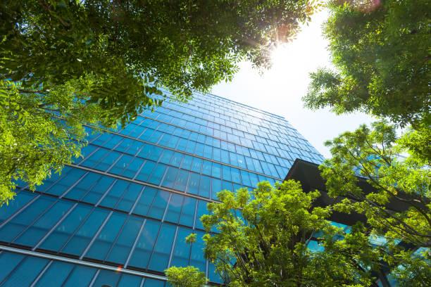事務所ビルと緑。 ストックフォト