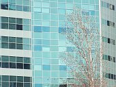 window,window frame,blue,Office Building