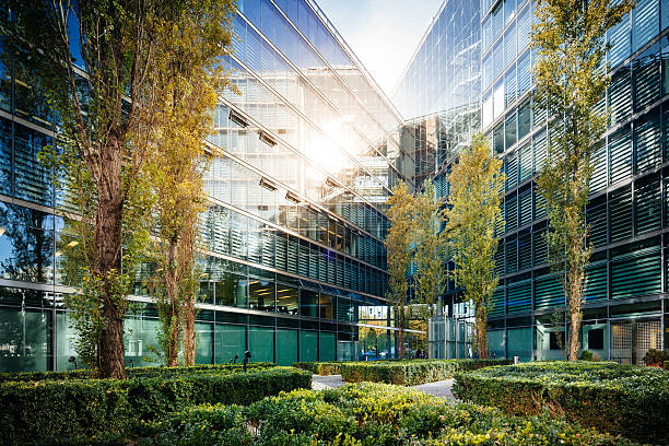 office building reflecting sunlight - fassadenschnitt stock-fotos und bilder