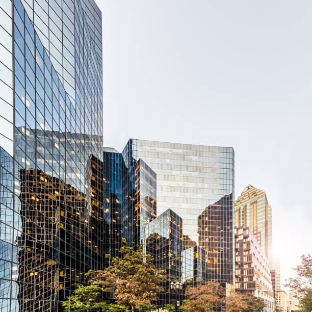 Office buildings among green trees stock photo
