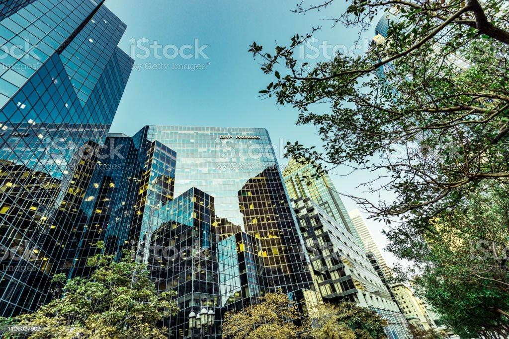 Bürogebäude unter grünen Bäumen – Foto