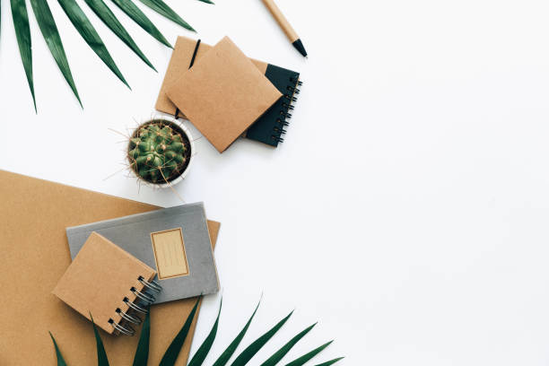 office desk table with stationery set, supplies and palm leaves. top view with copy space, flat lay. - climate clock imagens e fotografias de stock
