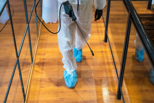 Office disinfection during COVID-19 pandemic - foto stock