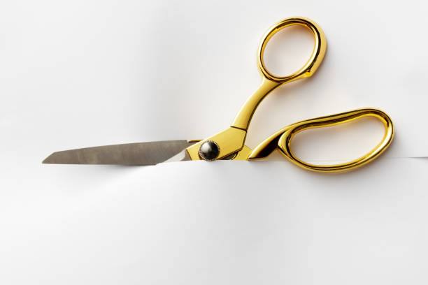 office: scissors cutting through paper - forbici foto e immagini stock