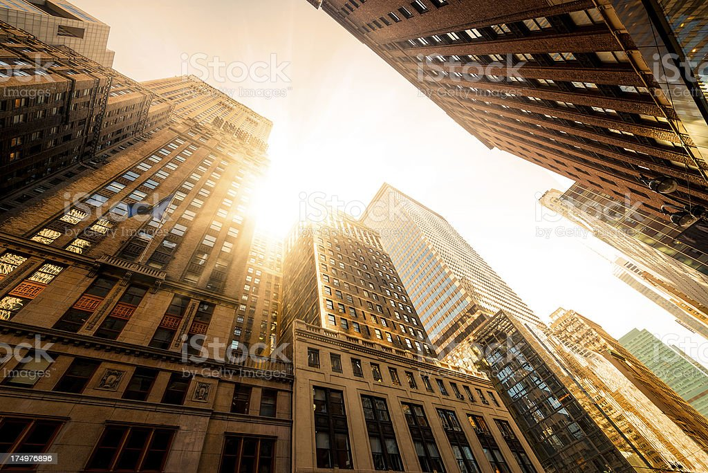 Office skysraper in the sun royalty-free stock photo