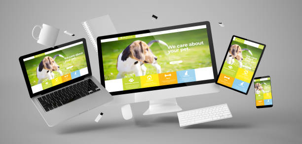 office stuff and devices floating with pet website stock photo