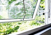 Office windows with garden view