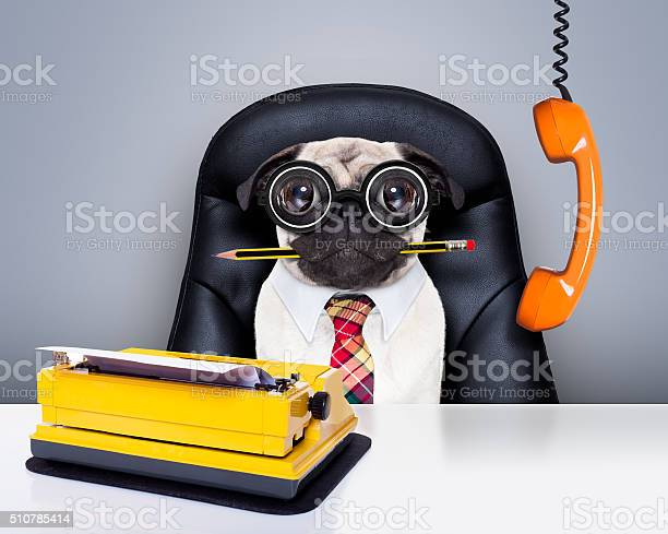 Office worker boss dog picture id510785414?b=1&k=6&m=510785414&s=612x612&h=m5wrcured c7elfzgu 2uai2gfznsfbbz socamtfly=