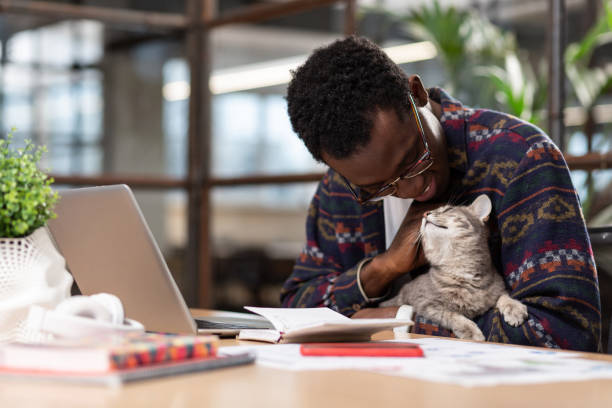 Office worker reducing stress by petting a cat picture id1134074069?b=1&k=6&m=1134074069&s=612x612&w=0&h=n88jnu 04o1d1wj1elpgxbctzh85fbhrpqxuwmxrli8=