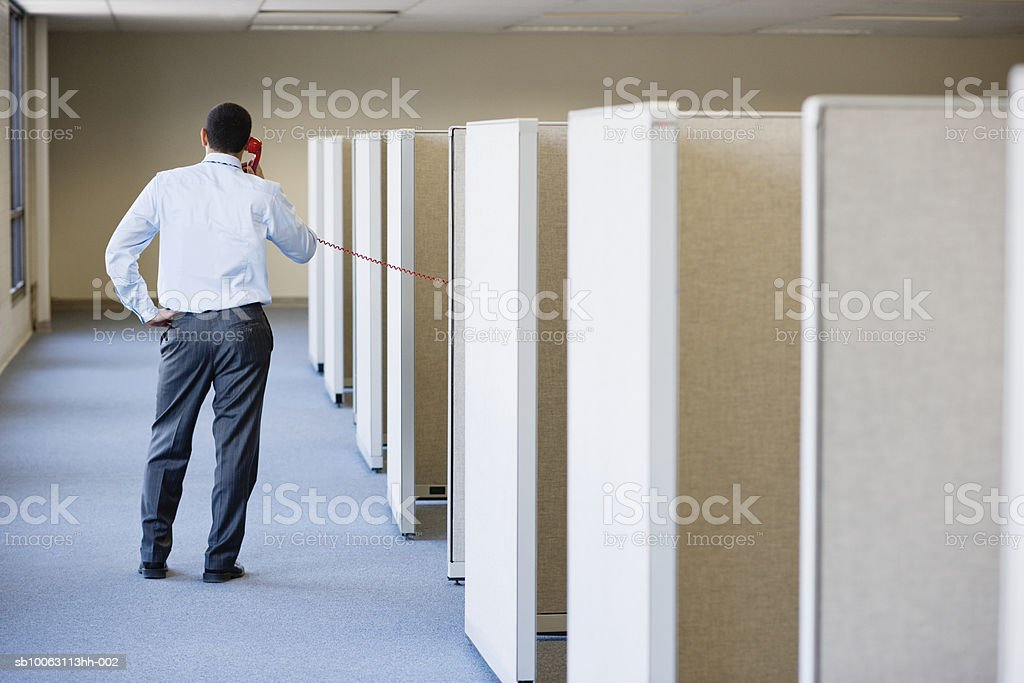 Office worker standing besides cubicles using landline phone, rear view Стоковые фото Стоковая фотография
