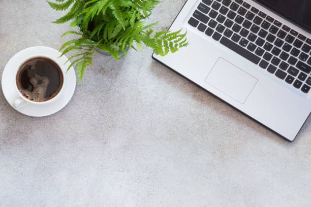 Office workplace with laptop, cup of coffee and plant. Top view with copy space. stock photo