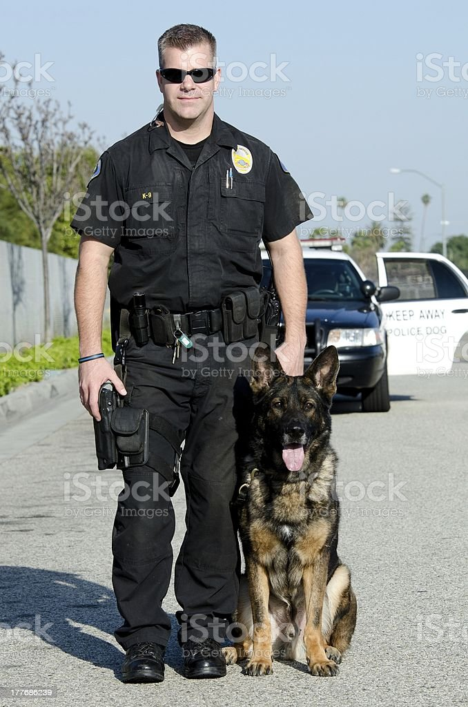 K9 officer stock photo