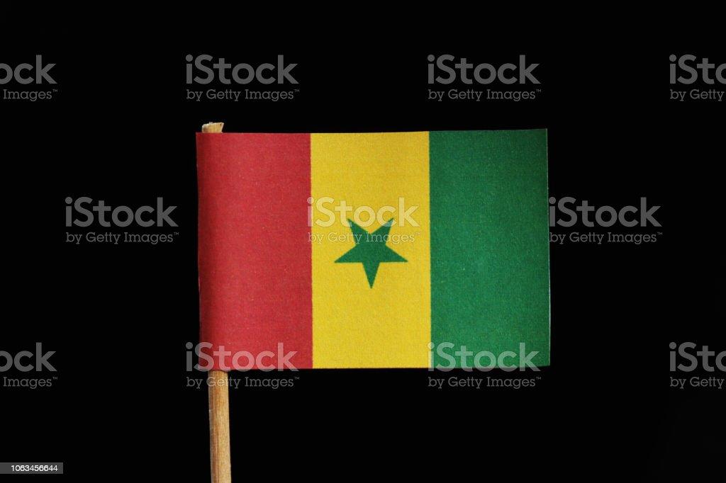Photo Libre De Droit De Un Drapeau Officiel Et Original Du Sénégal Sur Un Curedent Sur Fond Noir Un Tricolore Vertical De Vert Jaune Et Rouge Avec Une