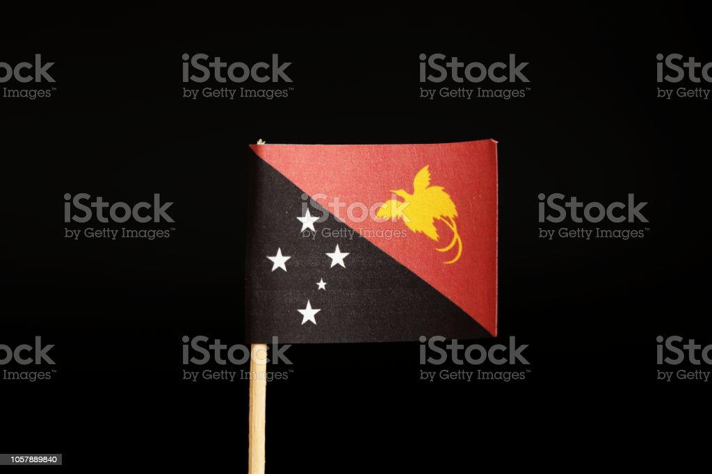 A official Flag of Papua New Guinea on wooden stick on black background. It is island state and belongs to oceania. stock photo