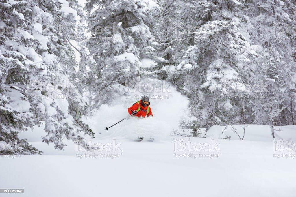 Off-piste skier ski forest freeride - foto de stock