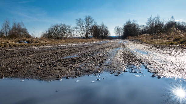 Off-road track close-up with tire imprints and sun reflection in puddle stock photo
