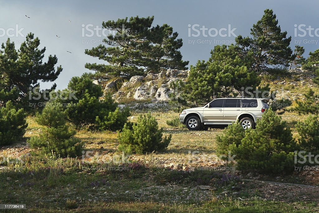 Offroading in an Suv / 4x4 / Mountain road stock photo
