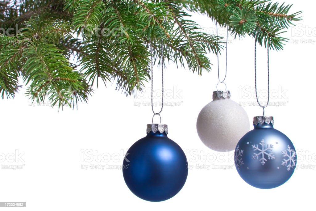 Oh Christmas Tree  (XL) royalty-free stock photo