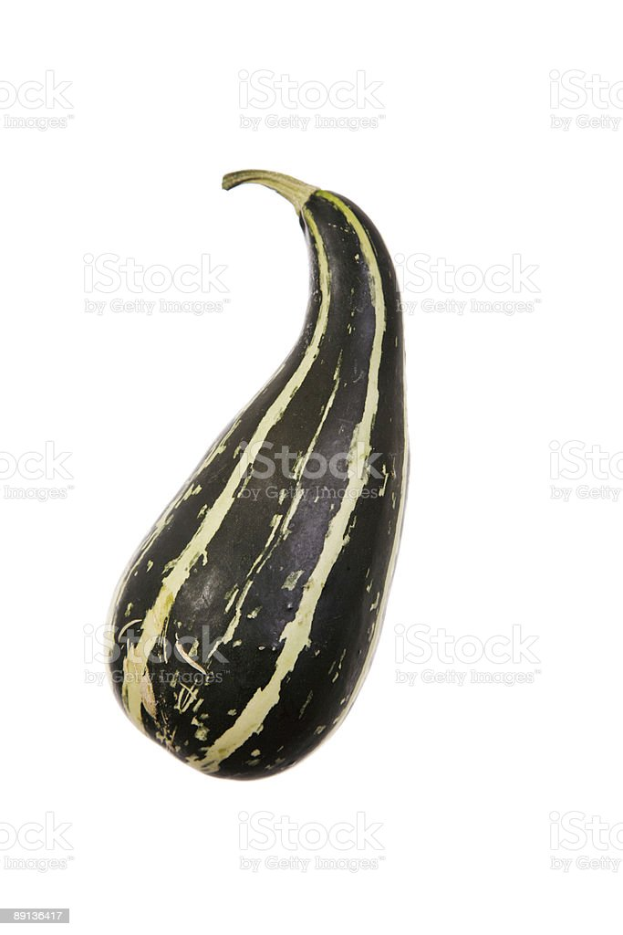 Oh My Gourd royalty-free stock photo