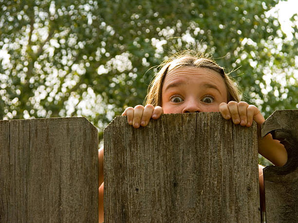 oh my! - fence stock photos and pictures