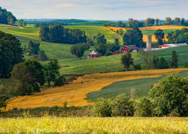 ohio countryside - rural scene stock pictures, royalty-free photos & images