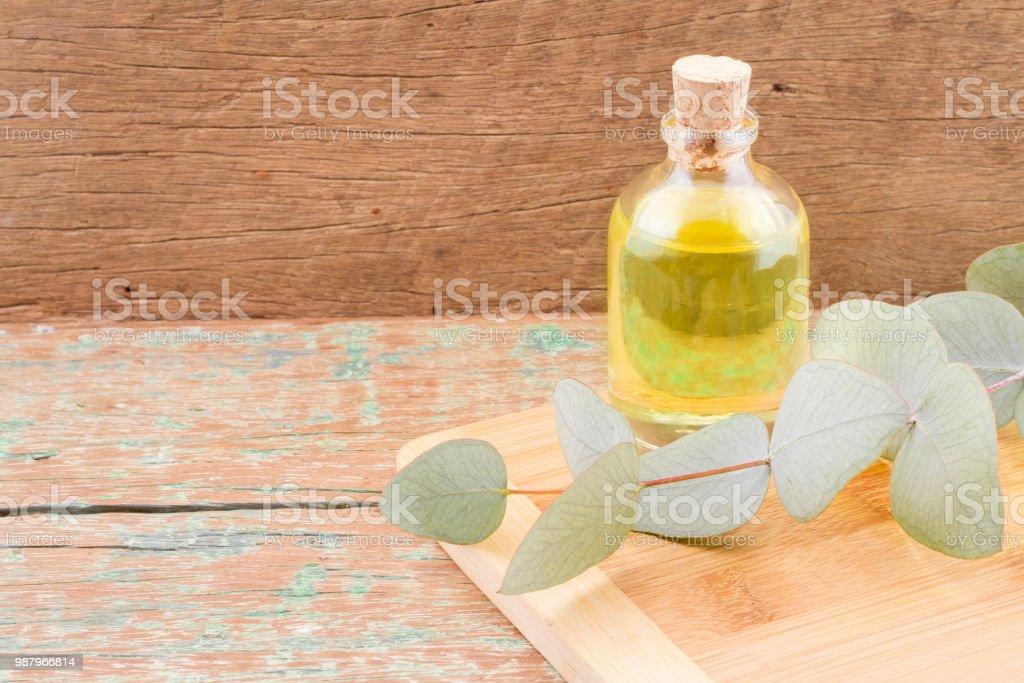 Öl Und Eukalyptus Blätter Auf Dem Holztisch Eucalyptus Deglupta ...