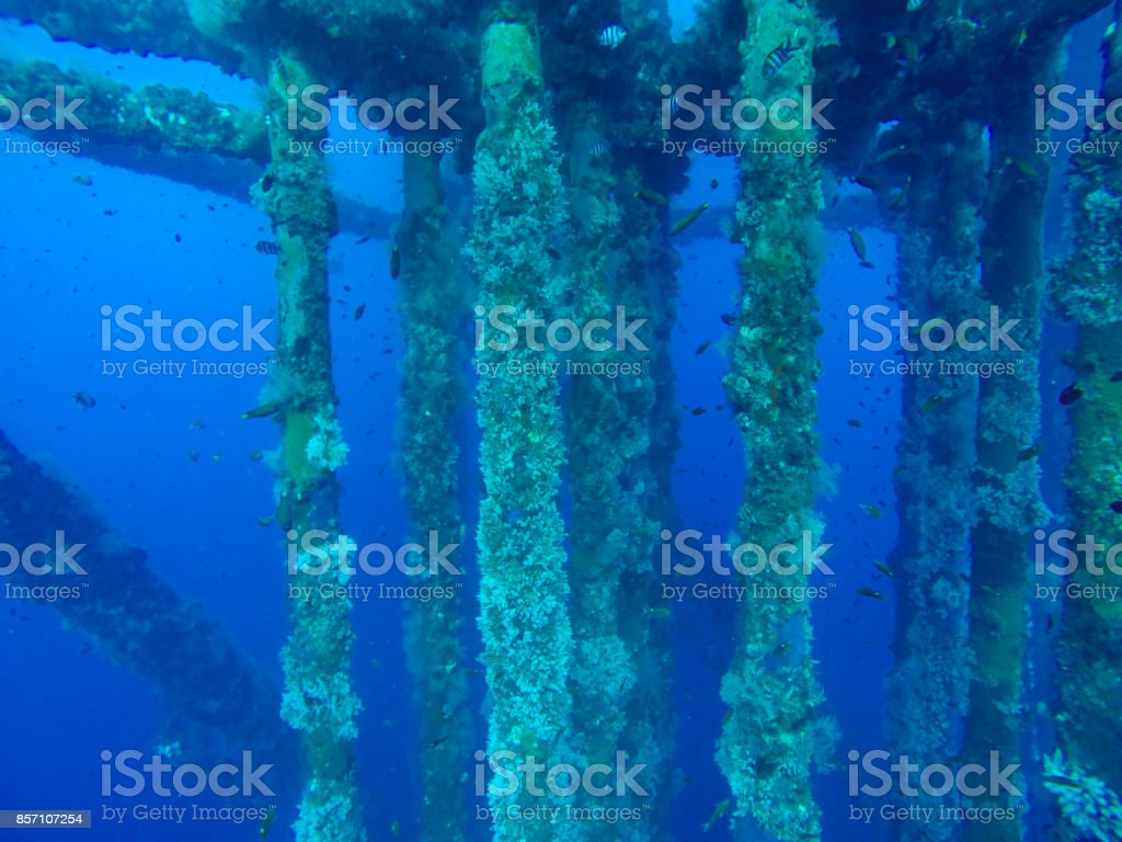 Oil and gas wellhead platform, under water shooting show oil and gas production tubing and platform jacket legs with coral at pipeline. stock photo