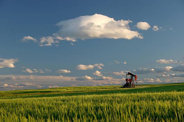 Campo de petróleo y Pumpjack en Alberta - foto de stock
