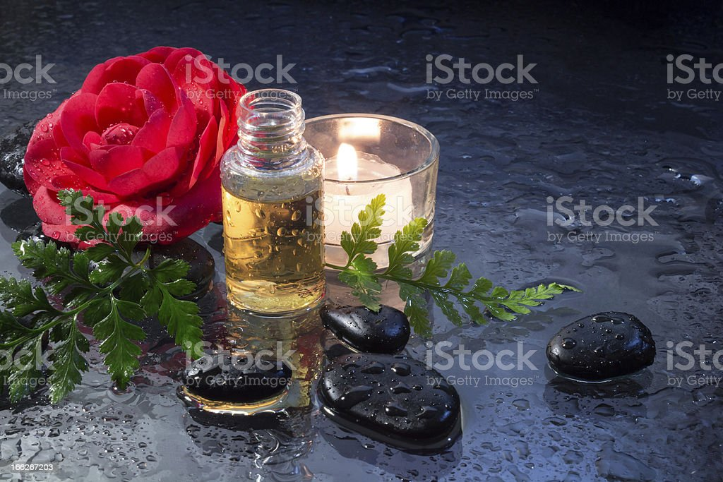 oil for massage whit camellia royalty-free stock photo