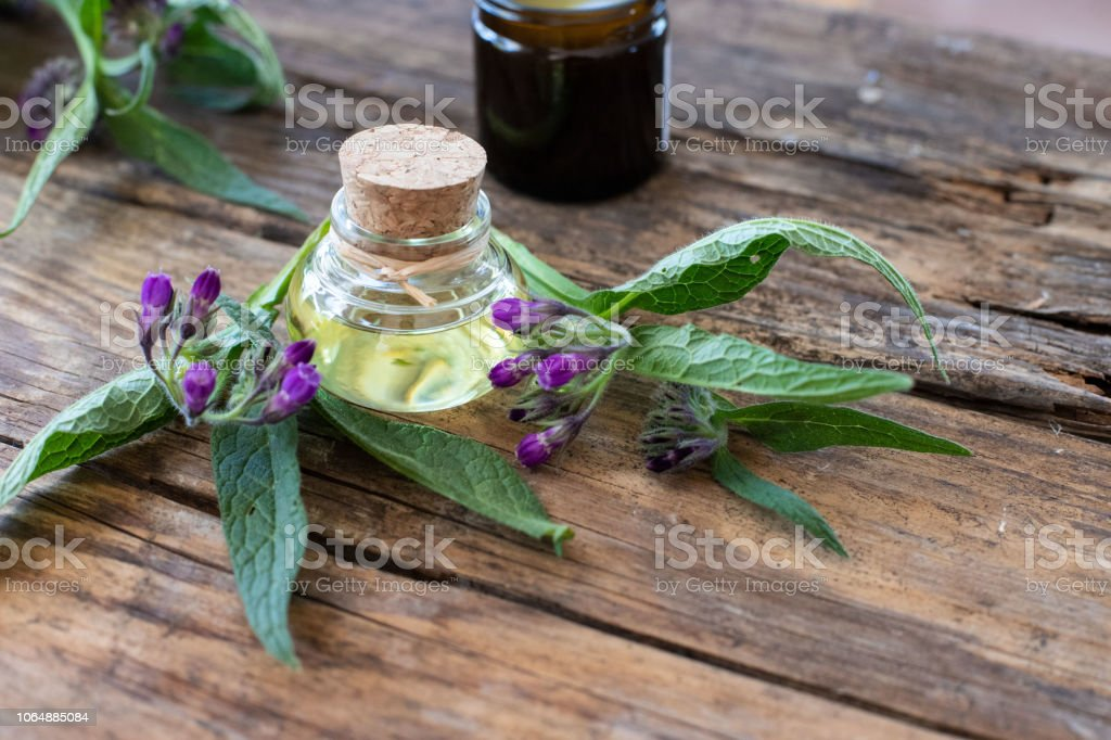 oil from comfrey - foto stock