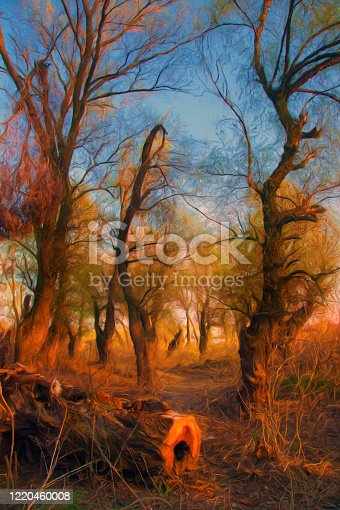 Oil landscape painting showing old forest in the autumn.