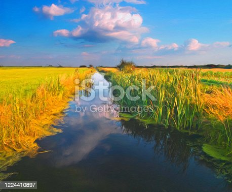 Oil landscape painting showing river flowing through the swamp on a sunny summer day.