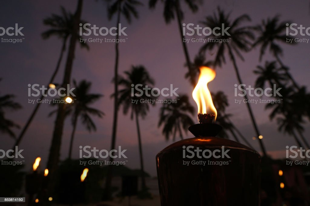 Oil lanterns on the beach en background of palm trees and the night sky stock photo
