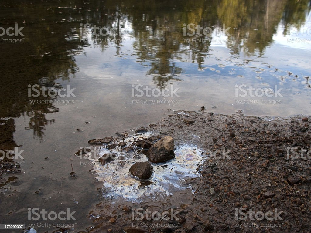 Oil Leak in Nature royalty-free stock photo