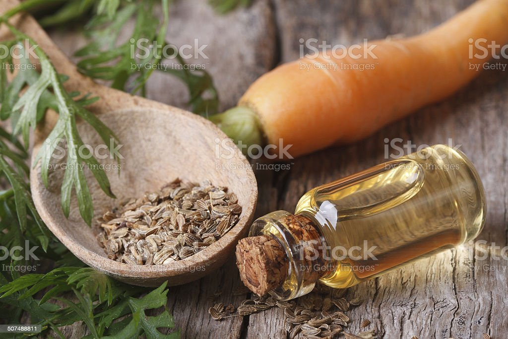 oil of carrot seeds in a bottle closeup top view stock photo