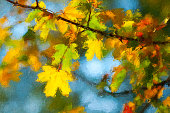 Oil painting showing autumn leaves on a sunny day.