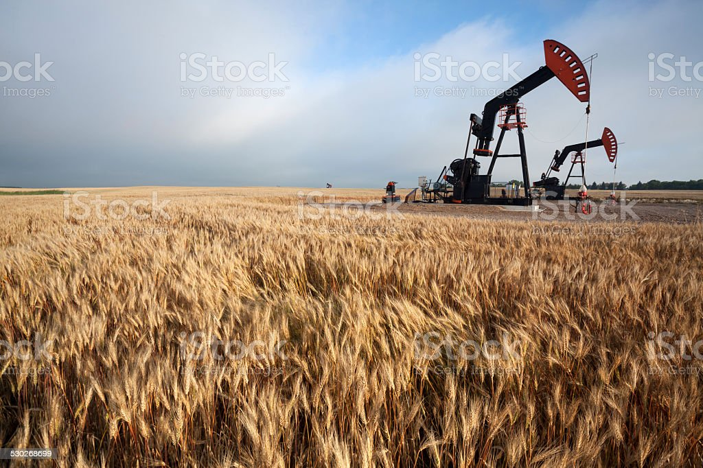 Oil Pump in the Prairies Manitoba Canada stock photo