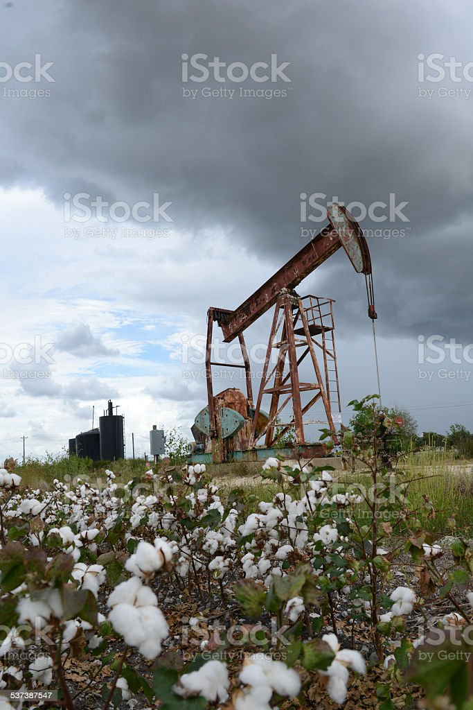Oil Pumping jack in Rural Cotton Farm of Texas, USA. stock photo