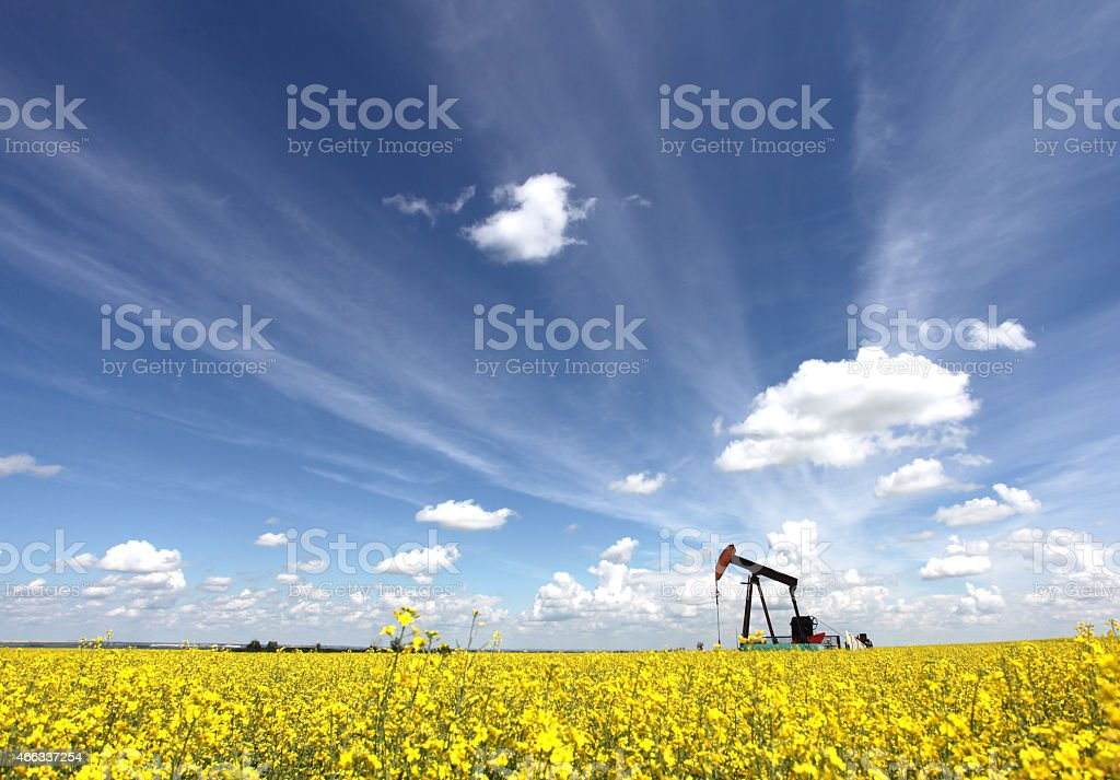 Oil Pumpjack in Alberta Canada stock photo